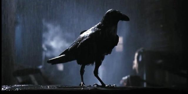 THE CROW (El Cuervo) EspecialHalloween